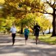 Royalty-Free Stock Photo: Park Jogging