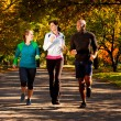 Fall Jog Park - Stock Photo