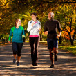 Fall Jog Park - Foto de Stock