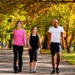 Stock Photo: Exercise Park