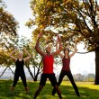 Park Exercise — Stock Photo