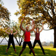 Stock Photo: Park Exercise