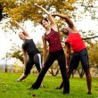 Stock Photo: Group Exercise