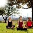 Yoga in Park — Stock Photo