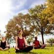 Park Yoga — Stock Photo #5703469