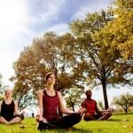 Park Yoga — Stock Photo