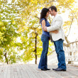 Smile Engagement Couple — Stock Photo #5703870