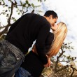 Royalty-Free Stock Photo: Europe City Kiss