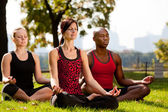 City Park Yoga — Stock Photo