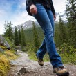 Stock Photo: Hike Detail in Mountains