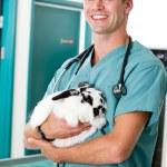 Retrato masculino veterinario — Foto de Stock
