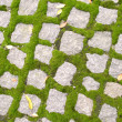 Stock Photo: Cobblestone Texture