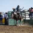 Stock Photo: Saddle Bronc