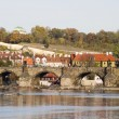 Charles Bridge — Stockfoto #5722795