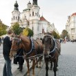 Horse Drawn Cart - Stock Photo