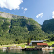 Mountain Fjord Farm — Stock Photo