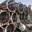Lobster Trap Detail — Stock Photo