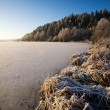 Lake landschap in de winter — Stockfoto