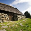 Viking Long House — Stock Photo #5727842