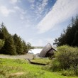 Viking boot huis — Stockfoto