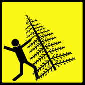 Christmas Tree Fall — Stock Photo