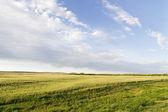 Prairie Sky Landscape — Stock Photo
