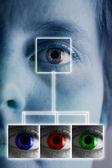 Iris scan — Stockfoto