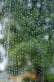 Rain Background — Stock Photo