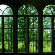 Garden Window — Foto de Stock