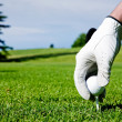 Golf Tee Hand — Stock Photo