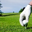 Golf Tee Hand — Stock Photo #5730306