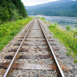 Stock Photo: Railraod Tracks