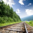 railraod tracks — Stock Photo