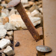 Railroad Spike - Stock Photo