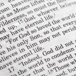 John 03:16 — Photo #5731054
