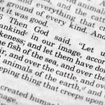 Genesis 1:26 — Stock Photo