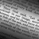 Genesis 1:26 — Stock Photo #5731166