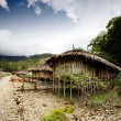 Stock Photo: Village Hut