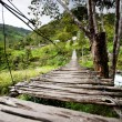 Hanging Bridge — Stock Photo #5731326