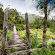 Stock Photo: Hanging Bridge