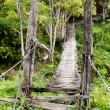 Royalty-Free Stock Photo: Hanging Bridge