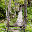 Hanging Bridge — Stock Photo #5731342