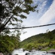 Hanging Bridge — Stock Photo #5731373