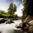 Stock Photo: Rapid River