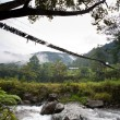 Stock Photo: Hanging Bridge Suspension