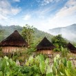 Stock Photo: Traditional Hut