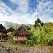 Traditional Hut — Stock Photo #5731657