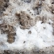 Stock Photo: Dirty Snow Background