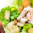 Salad Chicken Detail — Stock Photo