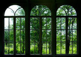 Garden Window — Stock Photo